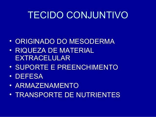 TECIDO CONJUNTIVO• ORIGINADO DO MESODERMA• RIQUEZA DE MATERIAL  EXTRACELULAR• SUPORTE E PREENCHIMENTO• DEFESA• ARMAZENAMEN...
