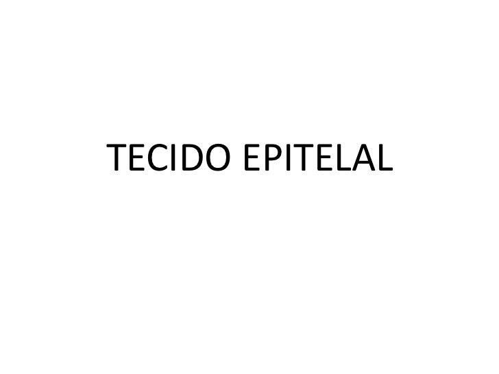 TECIDO EPITELAL<br />
