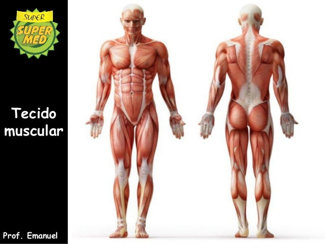 TecidomuscularProf. Emanuel