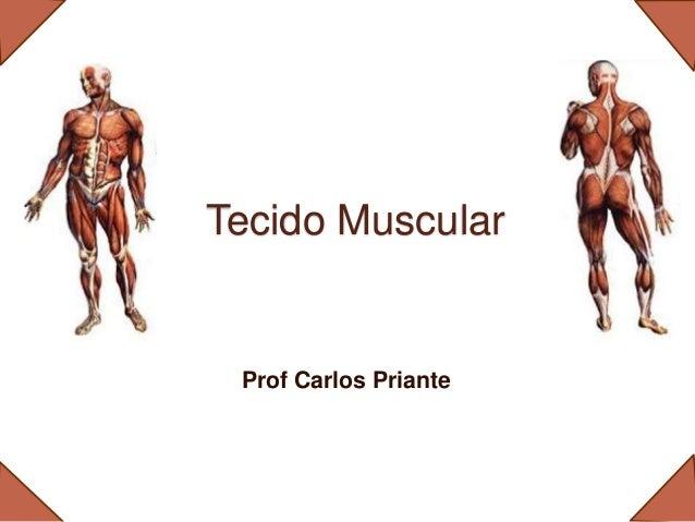 Tecido Muscular Prof Carlos Priante