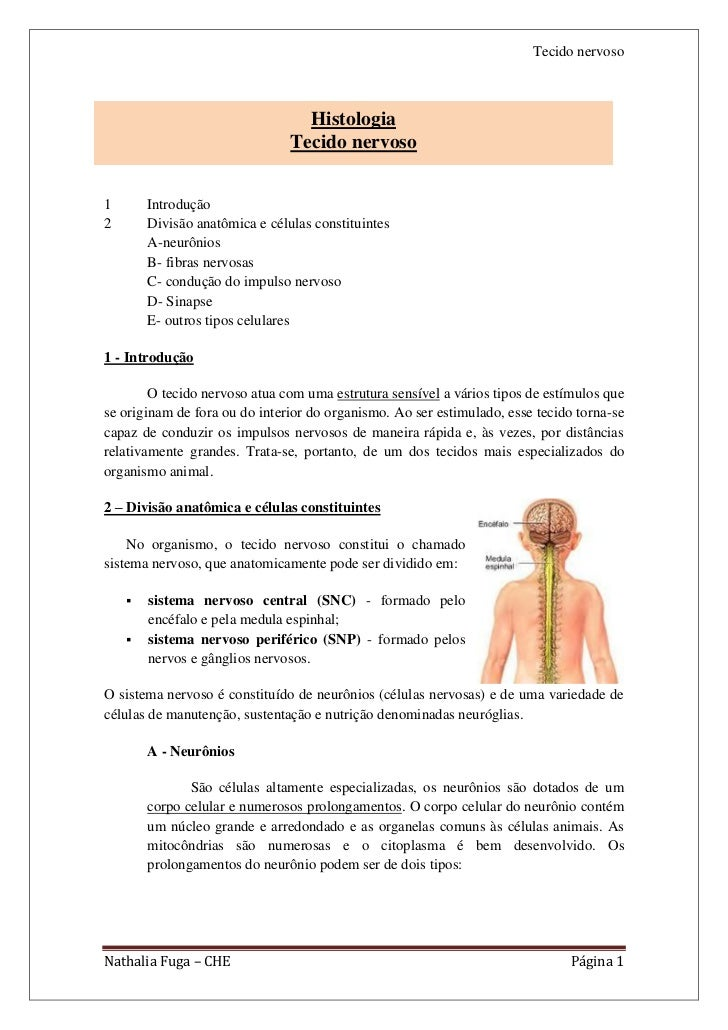 Tecido nervoso                                  Histologia                                Tecido nervoso1       Introdução...