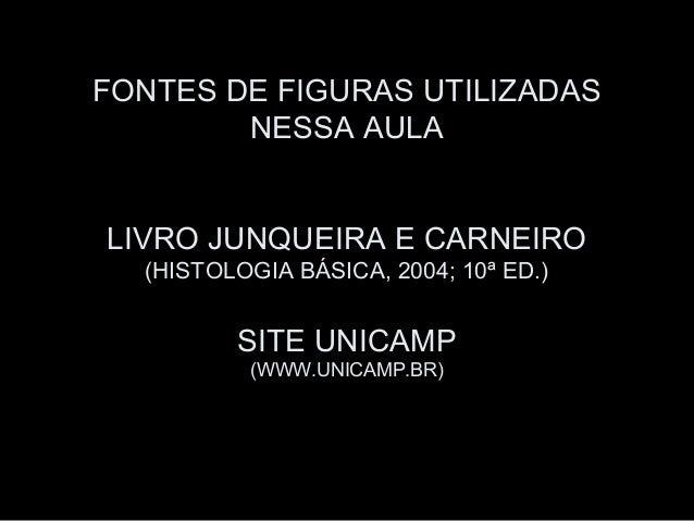 FONTES DE FIGURAS UTILIZADAS        NESSA AULALIVRO JUNQUEIRA E CARNEIRO  (HISTOLOGIA BÁSICA, 2004; 10ª ED.)         SITE ...