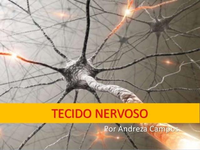 TECIDO NERVOSO Por Andreza Campos