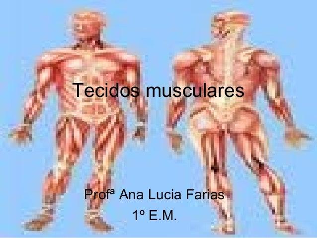 Tecidos musculares Profª Ana Lucia Farias 1º E.M.
