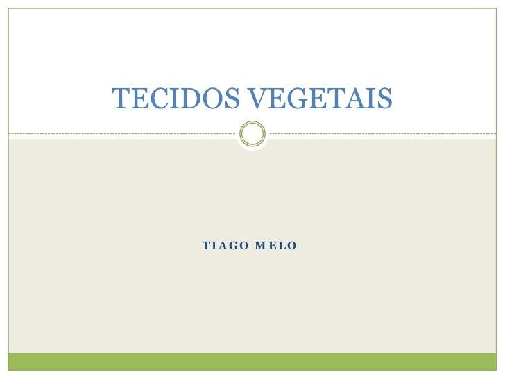 TIAGO MELO<br />TECIDOS VEGETAIS<br />