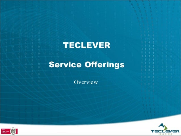TECLEVERService Offerings     Overview