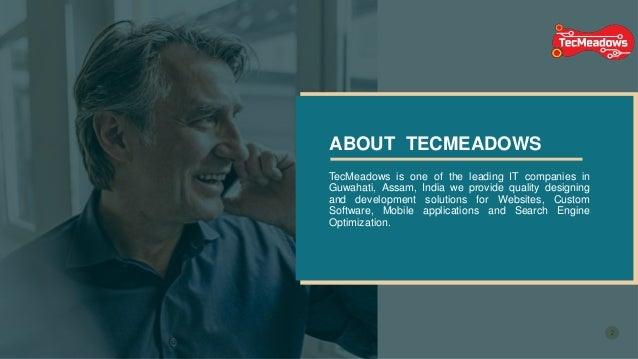 Tecmeadows Inc Website Designing In Guwahati
