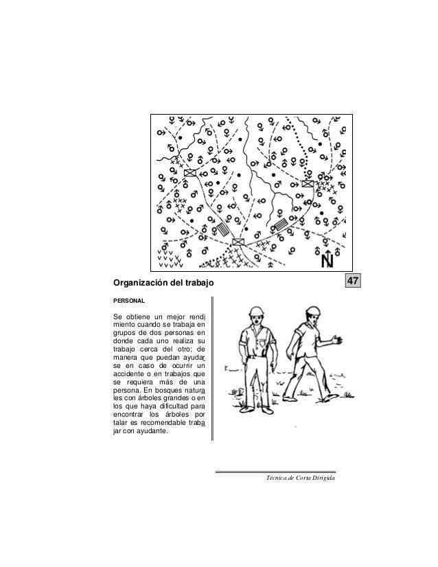 Tecnica de corta dirigida manual ilustrado for Cuchillo descortezador