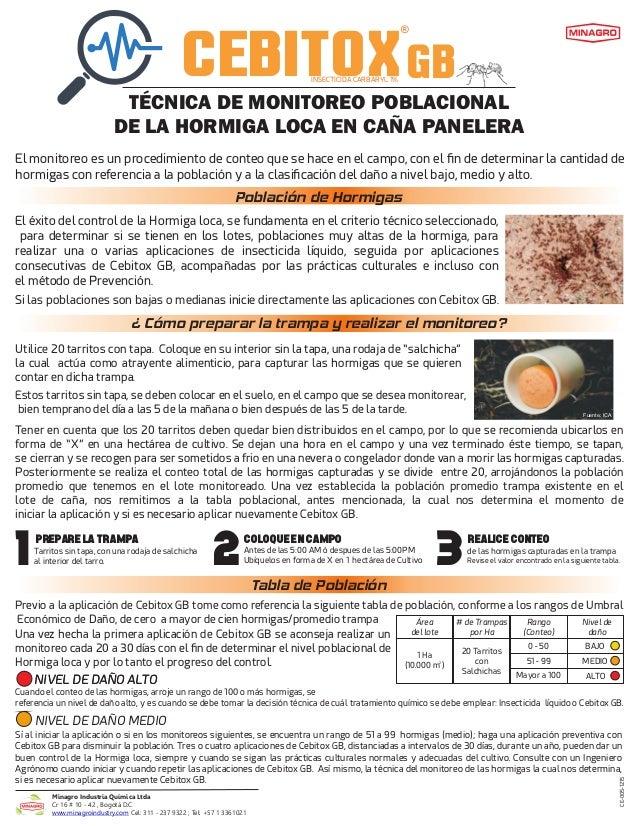 CEBITOXGB ® INSECTICIDA CARBARYL 1% TÉCNICA DE MONITOREO POBLACIONAL DE LA HORMIGA LOCA EN CAÑA PANELERA El monitoreo es u...