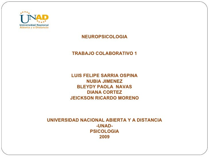 NEUROPSICOLOGIA TRABAJO COLABORATIVO 1 LUIS FELIPE SARRIA OSPINA NUBIA JIMENEZ BLEYDY PAOLA  NAVAS DIANA CORTEZ JEICKSON R...