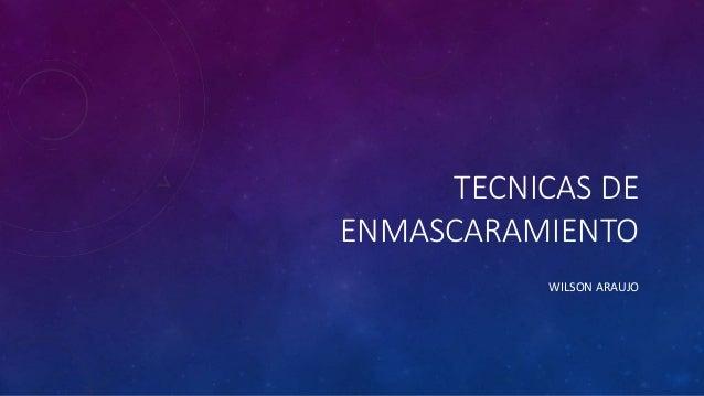 TECNICAS DE ENMASCARAMIENTO WILSON ARAUJO