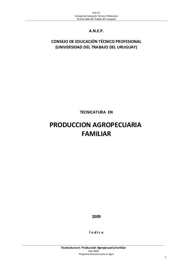 A.N.E.P. Consejo de Educación Técnico Profesional (Universidad del Trabajo del Uruguay) A.N.E.P. CONSEJO DE EDUCACIÓN TÉCN...