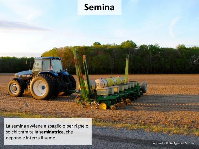 Tecniche agrarie for Semina a spaglio