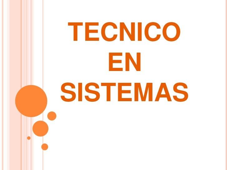 TECNICO EN SISTEMAS<br />