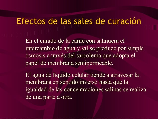 • Los agentes que modifican la velocidad de penetración de la sal son: • La temperatura • La concentración de salmuera ext...