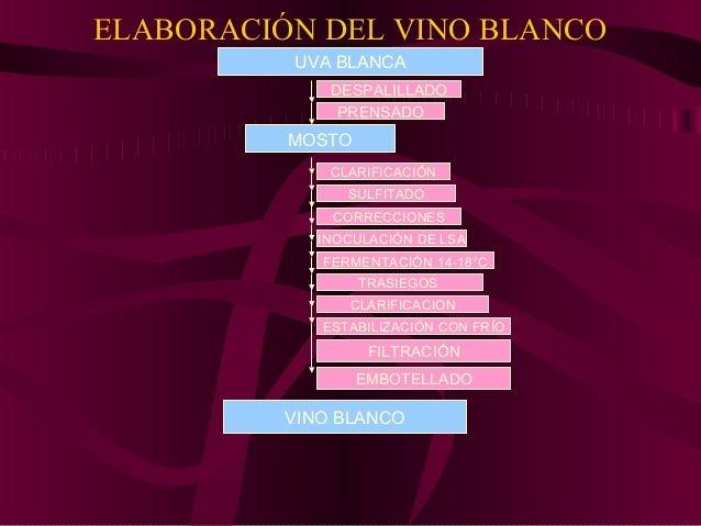 COMPOSICIÓN DEL TEQUILA • La materia prima utilizada para la elaboración del tequila es : agave azul Tequilana Weber. • Es...