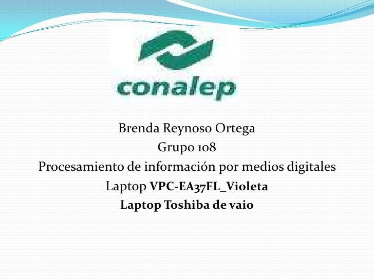 Brenda Reynoso Ortega<br />Grupo 108<br />Procesamiento de información por medios digitales <br />LaptopVPC-EA37FL_Violeta...