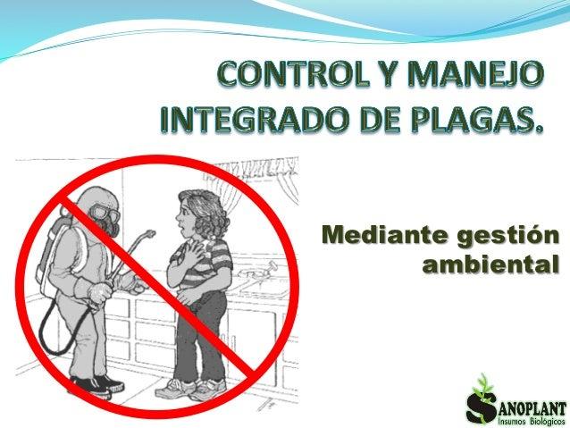 Tecnolog a biol gica en control de plagas urbanas camm 1 for Control de plagas badajoz