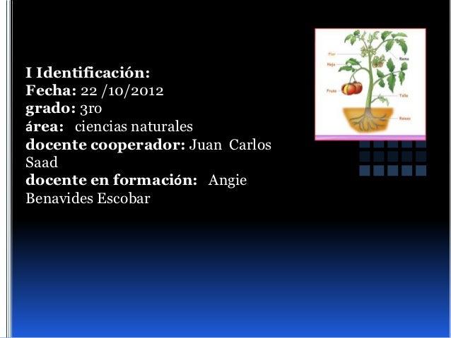 I Identificación:Fecha: 22 /10/2012grado: 3roárea: ciencias naturalesdocente cooperador: Juan CarlosSaaddocente en formaci...