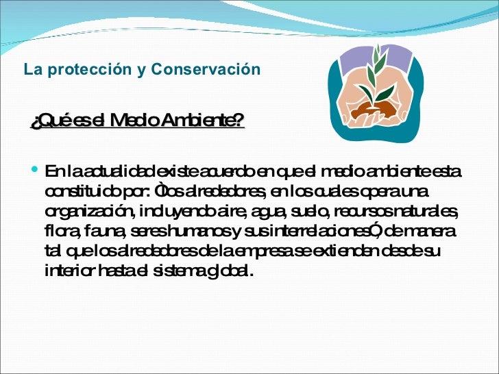 La protección y Conservación <ul><li>¿Qué es el Medio Ambiente?  </li></ul><ul><li>En la actualidad existe acuerdo en que ...