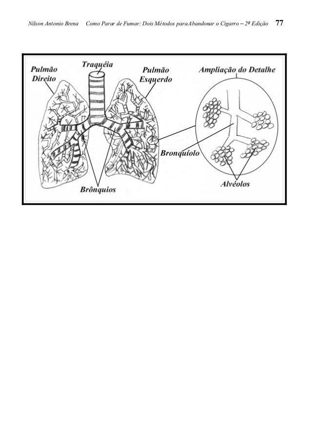 Que modificação ocorrem depois disto quando deixa de fumar