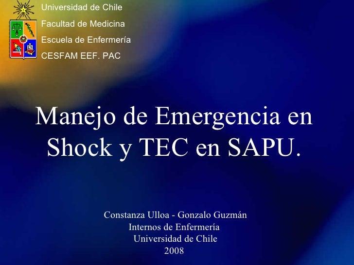 Manejo de Emergencia en Shock y TEC en SAPU. Constanza Ulloa - Gonzalo Guzmán Internos de Enfermería  Universidad de Chile...