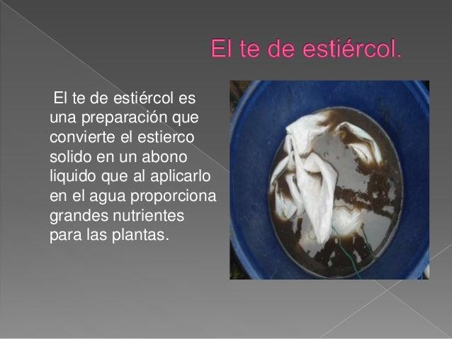 El te de estiércol es  una preparación que  convierte el estierco  solido en un abono  liquido que al aplicarlo  en el agu...