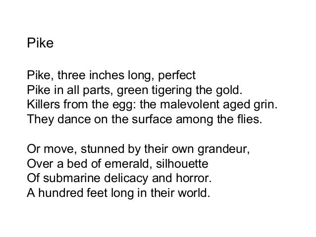 pike by ted hughes summary