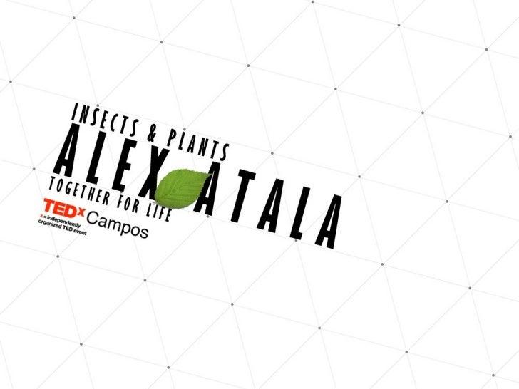 TEDxCampos 2012 - Alex Atala