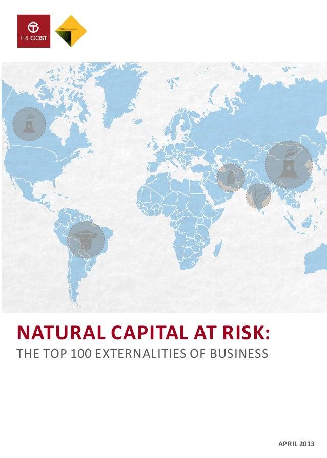 NATURAL CAPITAL AT RISK: THE TOP 100 EXTERNALITIES OF BUSINESS APRIL 2013