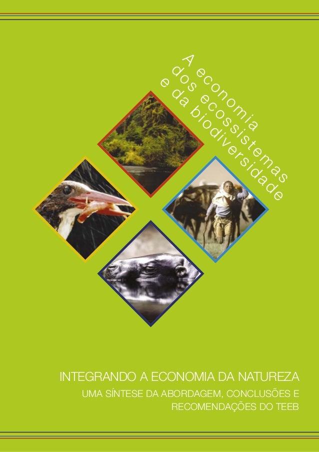 d os ecossistem as e da biodiversidade A econom ia Integrando a Economia da Natureza Uma síntese da abordagem, conclusões ...