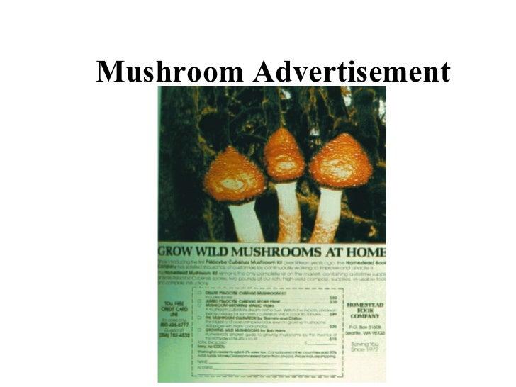 Mushroom Advertisement
