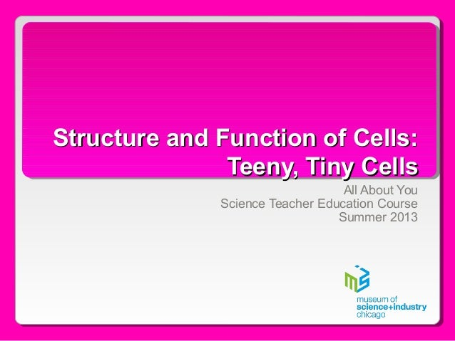 Structure and Function of Cells:Structure and Function of Cells: Teeny, Tiny CellsTeeny, Tiny Cells All About You Science ...