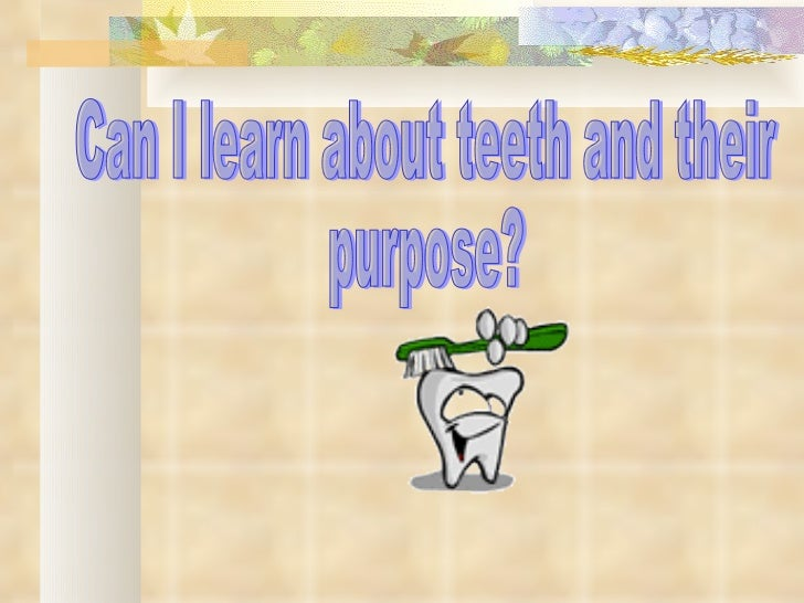 Can I learn about teeth and their  purpose?