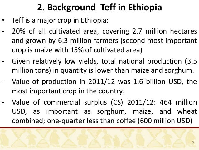 coffee consumption and production in ethiopia As the economy is improving, ethiopian consumption continues to expand in   through most of the 1990s ethiopia's annual coffee production.