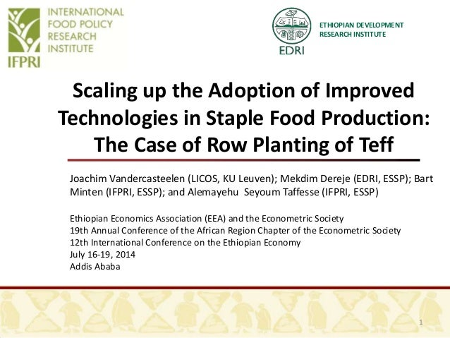 ETHIOPIAN DEVELOPMENT RESEARCH INSTITUTE Scaling up the Adoption of Improved Technologies in Staple Food Production: The C...