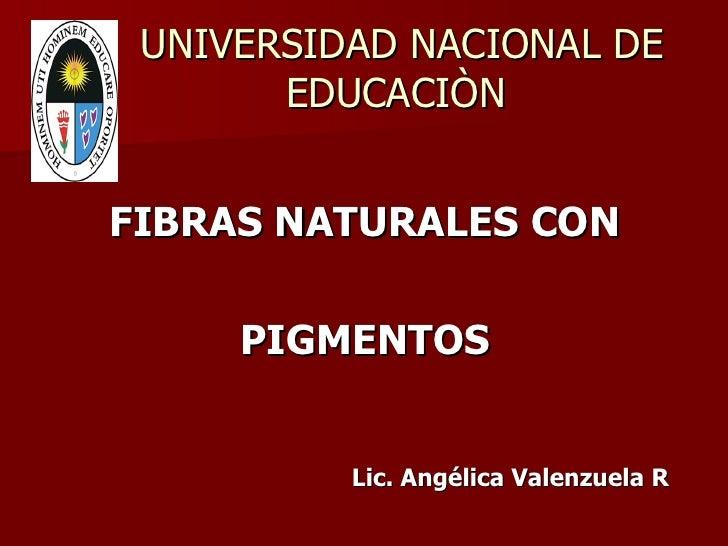 UNIVERSIDAD NACIONAL DE   EDUCACIÒN <ul><li>FIBRAS NATURALES CON  </li></ul><ul><li>PIGMENTOS </li></ul><ul><li>Lic. Angél...