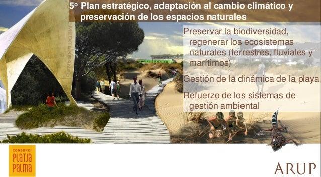 5o Plan estratégico, adaptación al cambio climático y preservación de los espacios naturales  Preservar la biodiversidad, ...
