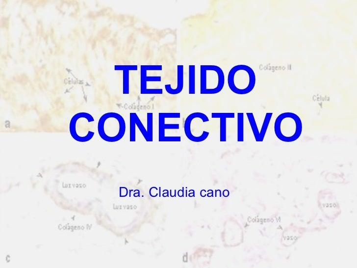 TEJIDO CONECTIVO Dra. Claudia cano