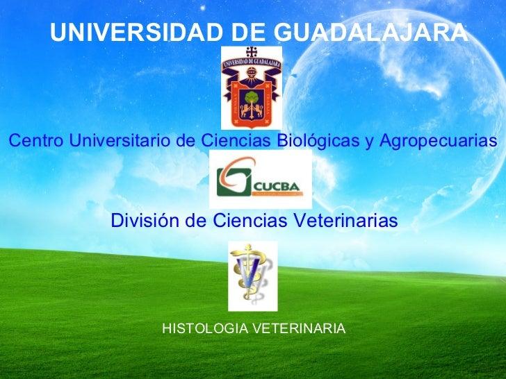 UNIVERSIDAD DE GUADALAJARA Centro Universitario de Ciencias Biológicas y Agropecuarias División de Ciencias Veterinarias H...