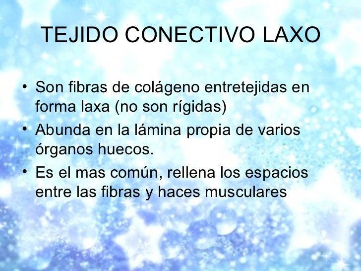 TEJIDO CONECTIVO LAXO <ul><li>Son fibras de colágeno entretejidas en forma laxa (no son rígidas) </li></ul><ul><li>Abunda ...