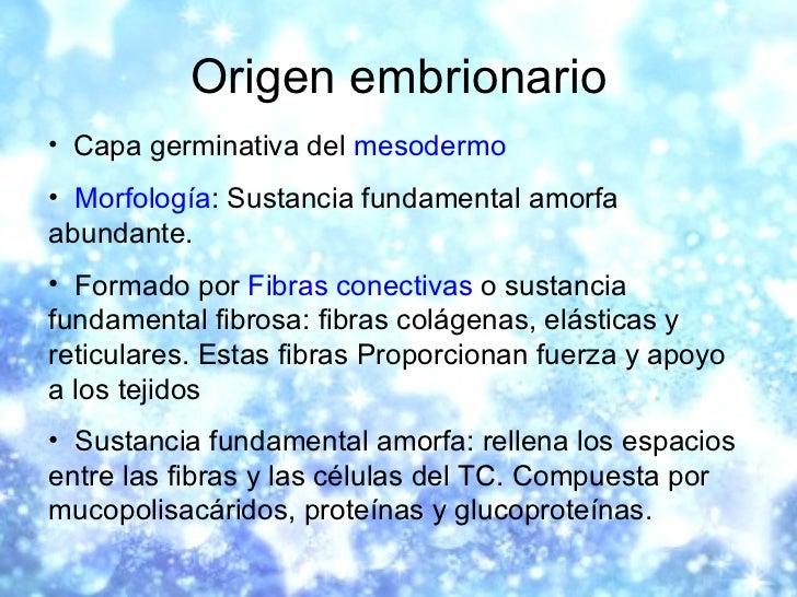 Origen embrionario <ul><li>Capa germinativa del  mesodermo   </li></ul><ul><li>Morfología : Sustancia fundamental amorfa a...