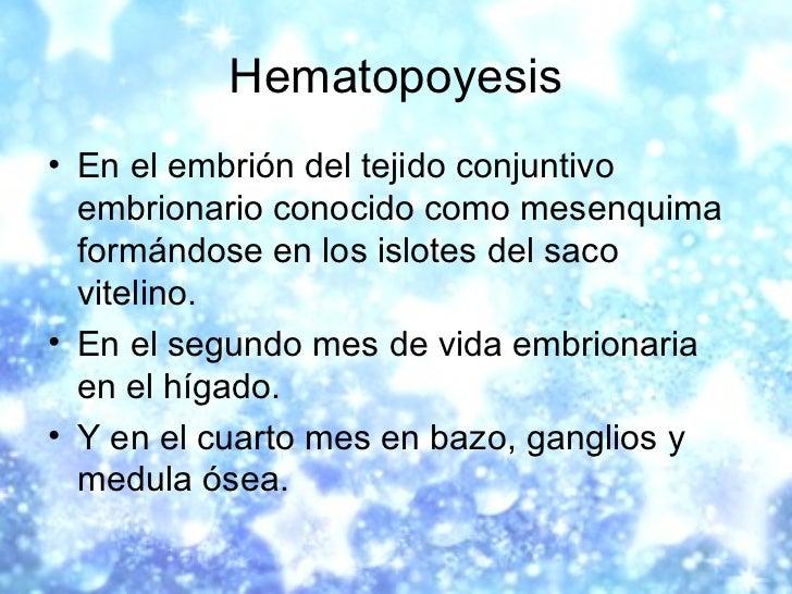 Hematopoyesis <ul><li>En el embrión del tejido conjuntivo embrionario conocido como mesenquima formándose en los islotes d...