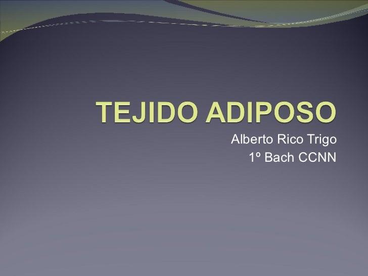 Alberto Rico Trigo 1º Bach CCNN