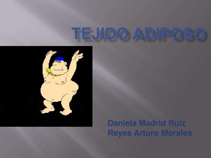 Tejido adiposo<br />Daniela Madrid Ruiz<br />Reyes Arturo Morales<br />