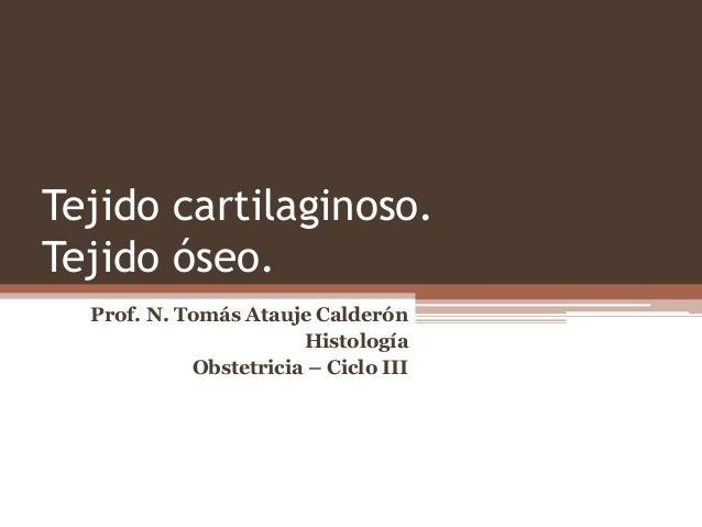 Tejido cartilaginoso. Tejido óseo. Prof. N. Tomás Atauje Calderón Histología Obstetricia – Ciclo III
