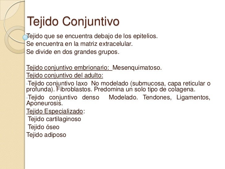 Tejido ConjuntivoTejido que se encuentra debajo de los epitelios.Se encuentra en la matriz extracelular.Se divide en dos g...