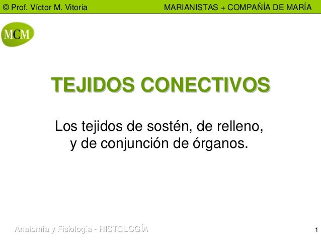 1 © Prof. Víctor M. Vitoria MARIANISTAS + COMPAÑÍA DE MARÍA Anatomía y FisiologíaAnatomía y FisiologíaAnatomía y Fisiologí...