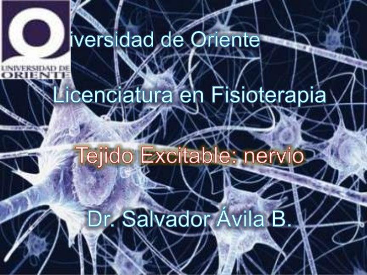    El sistema nervioso central contiene    alrededor de 100000 millones de    neuronas (elementos básicos de SNC).   Es ...