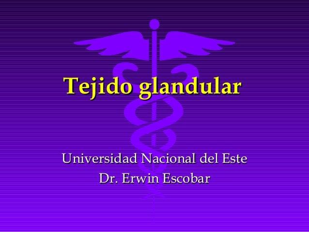 Tejido glandularUniversidad Nacional del Este     Dr. Erwin Escobar
